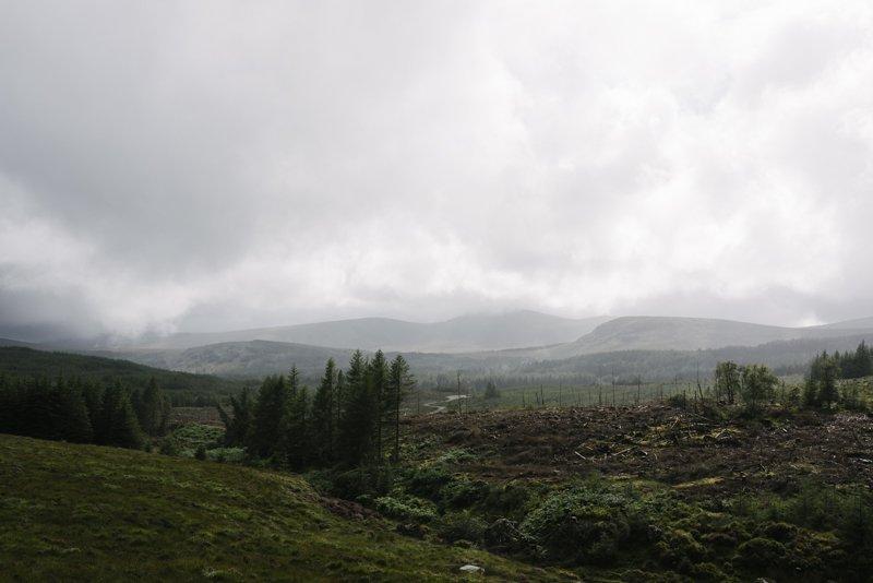 Ireland 2016 © www.damienmilan.com-31
