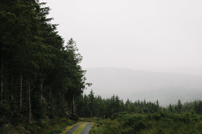 Ireland 2016 © www.damienmilan.com-33